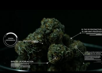 """Documental """"Marihuana primero las personas"""": pasado, presente y futuro del cannabis en España"""