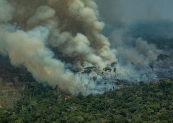 El confinamiento no paraliza el movimiento climático en el Día de la Tierra