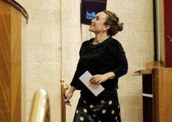 Adelante Andalucía pide al Gobierno andaluz un plan de choque en defensa de la cultura andaluza