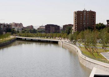 Unidas Podemos reivindica planes de renaturalización para recuperar la biodiversidad urbana