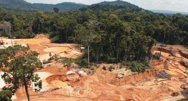 La deforestación en la Amazonia Brasileña rompe su récord en abril