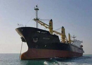Ingresa en aguas venezolanas buque de Irán con alimentos