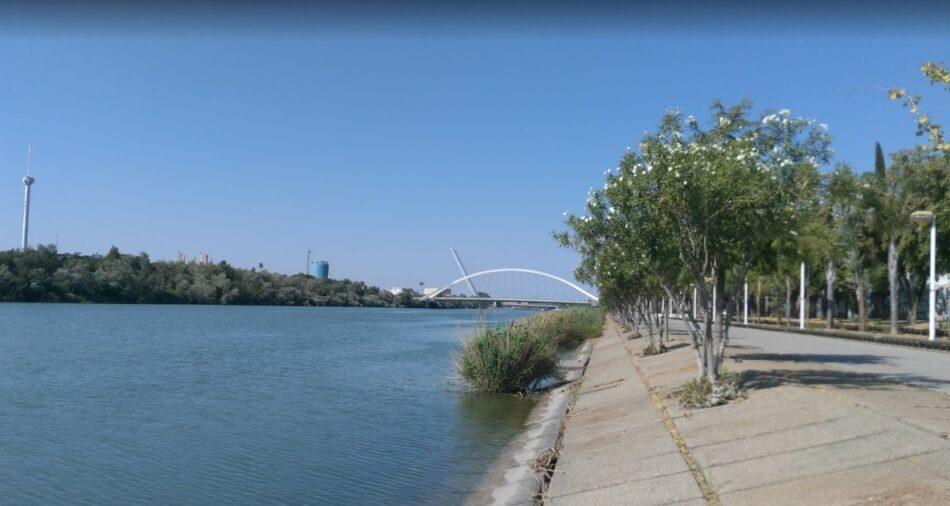 """Adelante Sevilla propone una batería de medidas para """"poner en valor el paseo fluvial del Guadalquivir"""""""