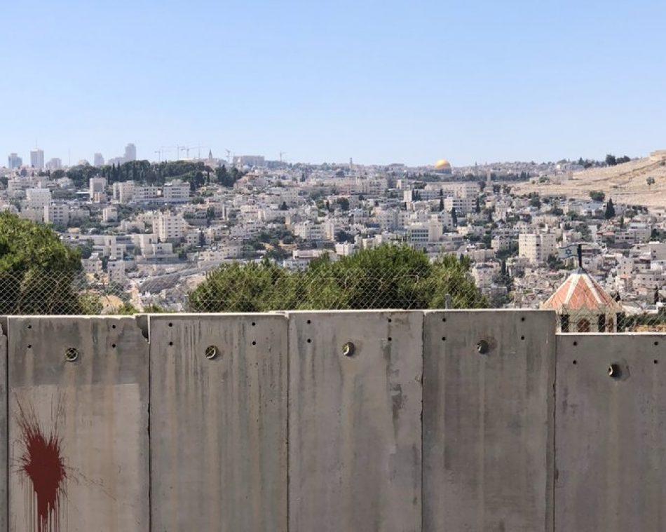"""Pineda pide a Borrell que """"use todos los mecanismos"""" de la UE para """"frenar en seco"""" la anexión de Cisjordania anunciada por Israel"""