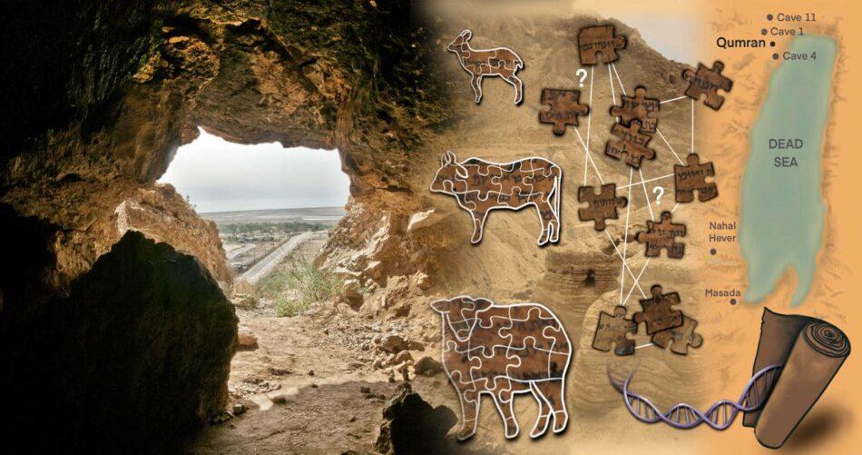 El ADN de los Manuscritos del Mar Muerto desvela algunos de sus secretos