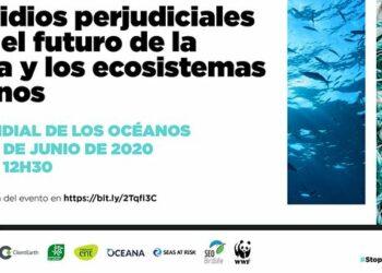 El medio marino sufre nuevas amenazas con la COVID-19