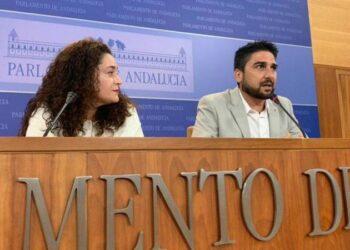 IU Sevilla reclama que as auxiliares del SAD sean consideradas prioritarias para la vacunación