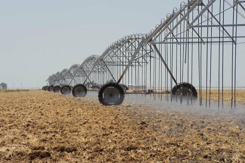 «Es necesario reducir el regadío para luchar contra la desertificación y la sequía»