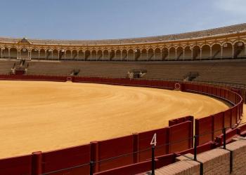 Para EQUO VERDES Andalucía la tauromaquia no debe ser subvencionada con o sin pandemia