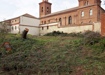 El Ayuntamiento de Madrid autoriza la tala de casi un centenar de árboles en Hortaleza para un gimnasio sin licencia de obras