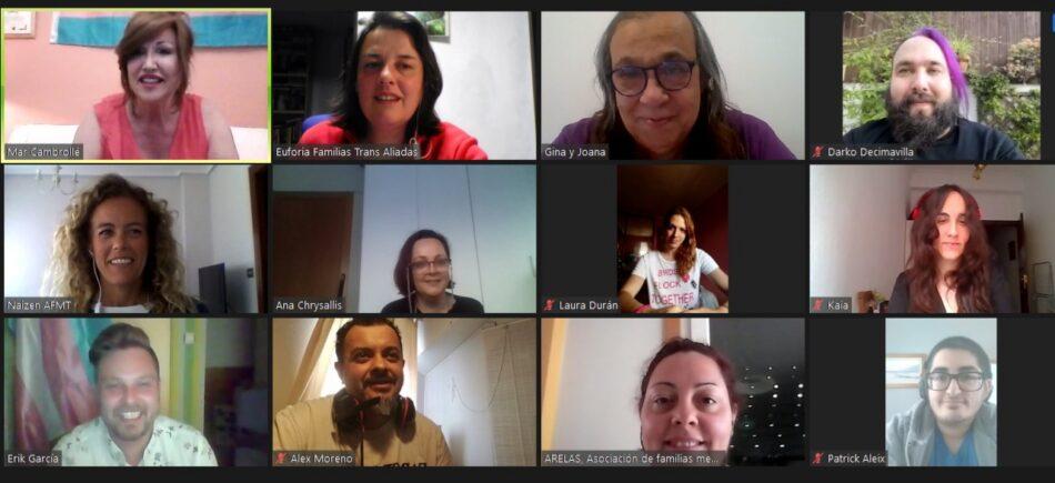 Colectivos trans de España y sus familias piden la comparecencia en el Congreso de Carmen Calvo y urgen al Gobierno la tramitación de la Ley Trans estatal