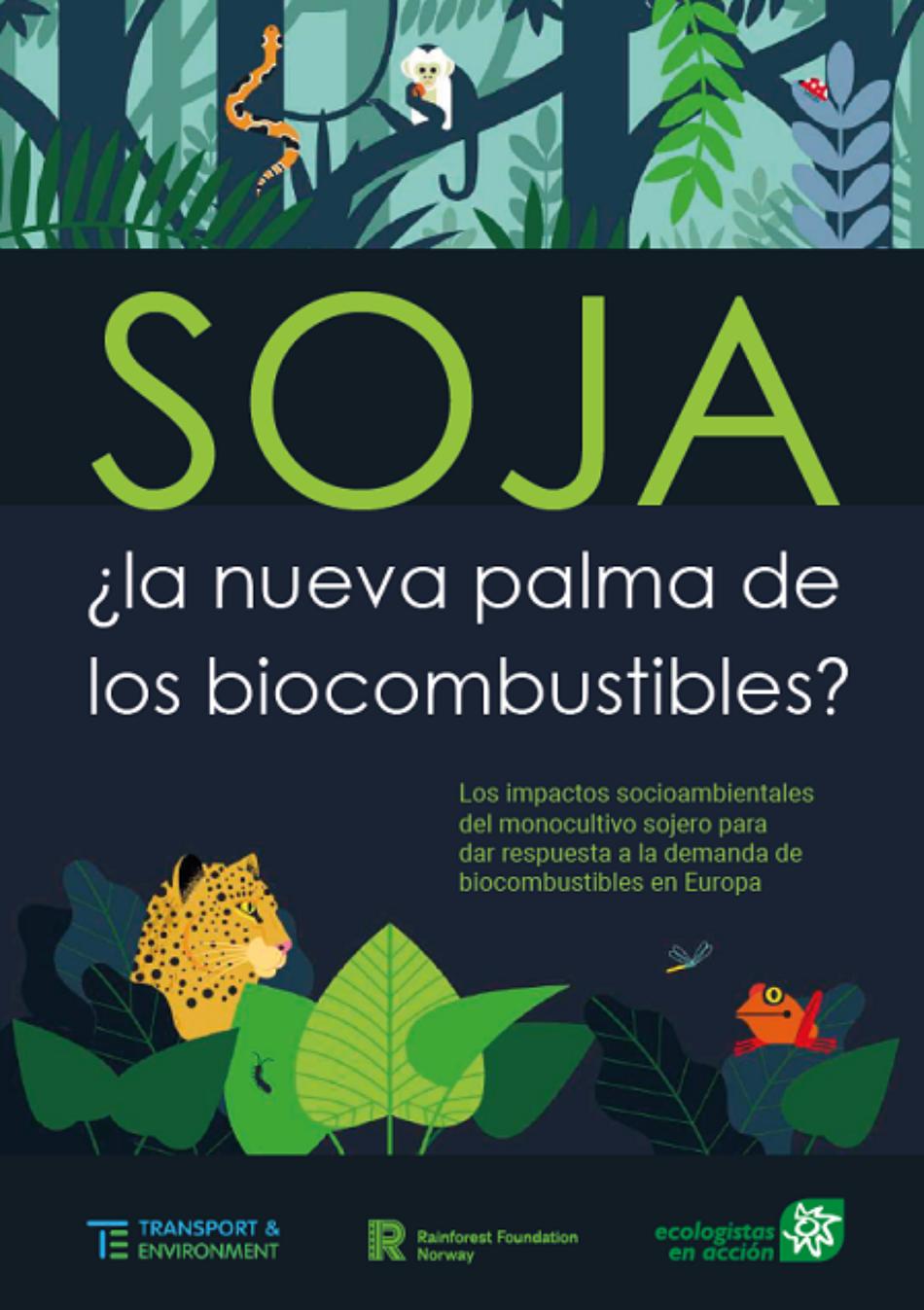 El biodiésel de soja, en auge tras la prohibición de la palma, provoca graves impactos socioambientales