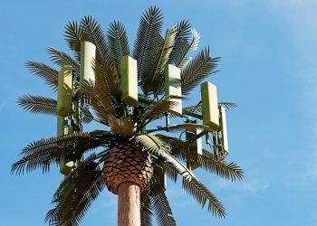 Equo Verdes Almería aboga por el principio de precaución ante la implantación de la tecnología del 5G