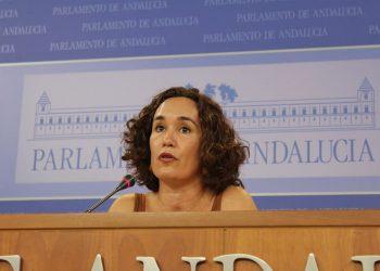 Naranjo pide al Gobierno andaluz que fiscalice la gestión del cheque libro para que se cumpla la normativa y no se vean perjudicadas las pequeñas y medianas librerías