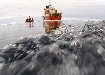 Predicen la emisión de un gas producido por el fitoplancton en el océano Antártico que altera el clima