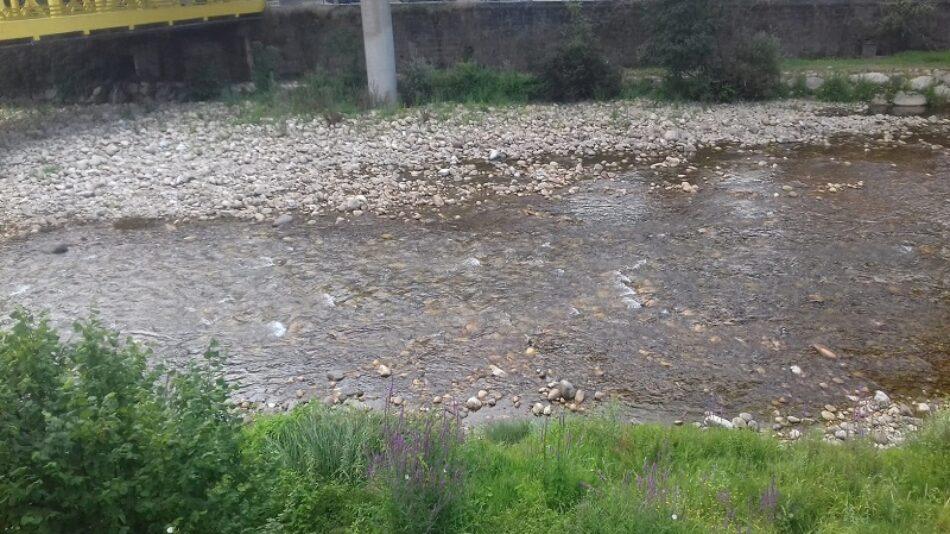 Nos oponemos a que se seque mas el río Nalón