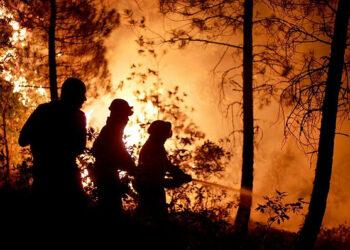 El abandono del medio rural está aumentando la vulnerabilidad ante los incendios de alta intensidad en España