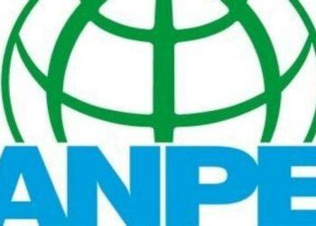 El sindicato ANPE se opone a las huelgas de educación