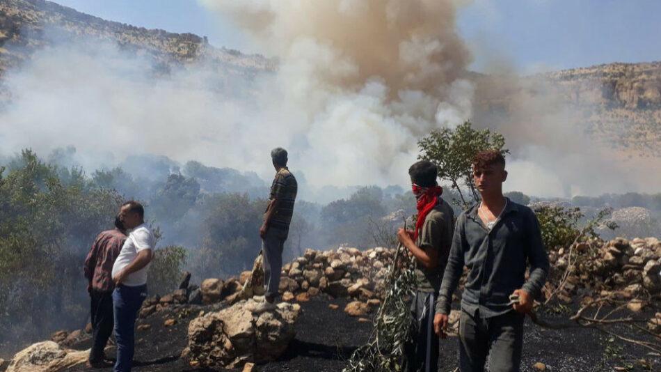 Los incendios forestales son una campaña de destrucción ecológica en el Kurdistán