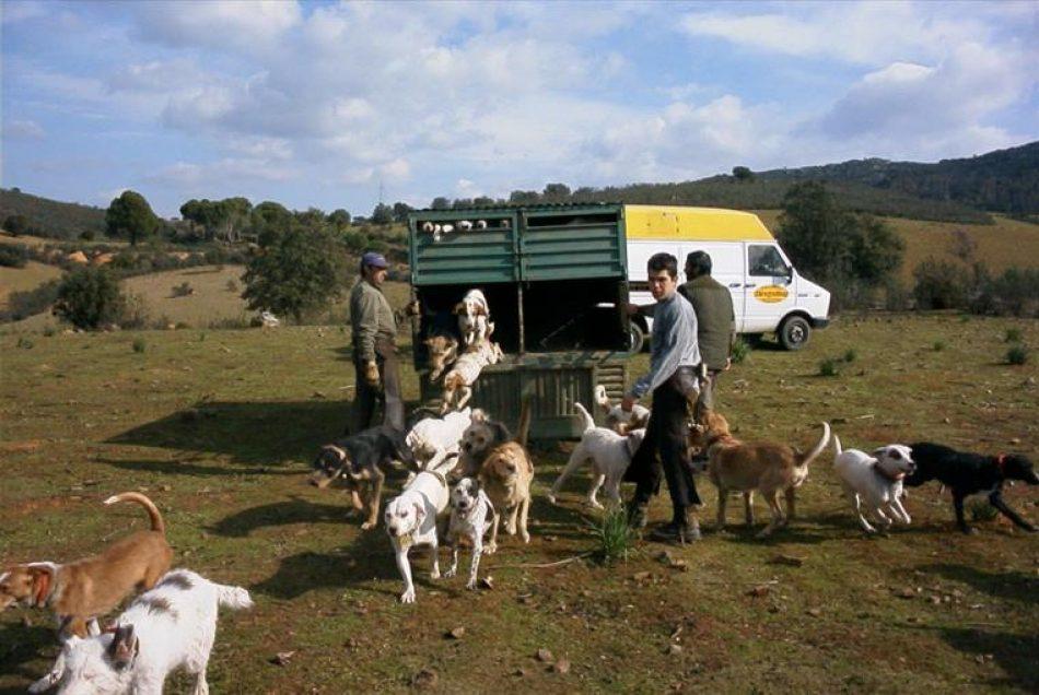 EQUO Verdes Andalucía considera anacrónico declarar de Bien de Interés cultural (BIC) a las rehalas y monterías