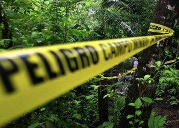 Dos nuevas masacres causan 11 víctimas mortales en Colombia en las últimas horas