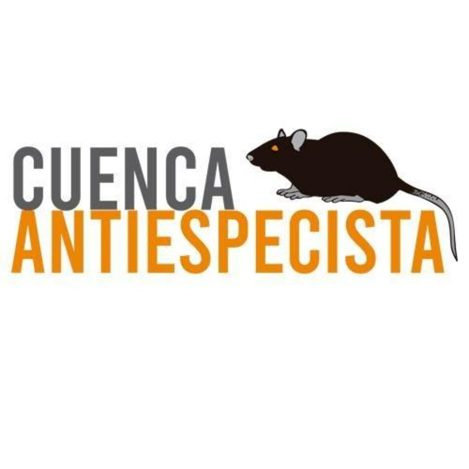 El Bloque Antiespecista de Cuenca denuncia la novillada celebrada en Las Majadas