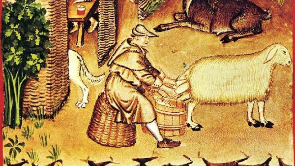 ¿Sabes cuántas horas trabajaba un campesino de la Edad Media?