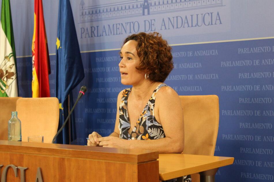 """IU Andalucía acusa al Gobierno andaluz de querer """"tapar las vergüenzas"""" de su gestión de la Dependencia con una reforma de la ley que vacía de competencias a los ayuntamientos"""