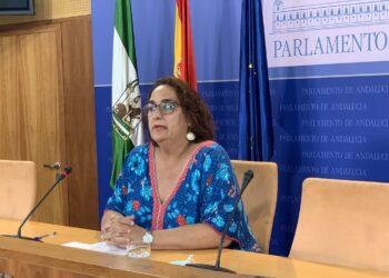 Adelante reprocha a PP, Cs y VOX su veto a esclarecer lo ocurrido en las residencias de mayores durante la pandemia