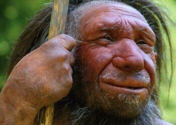 Los neandertales tenían mayor semejanza genética con los 'Homo sapiens' que con los denisovanos