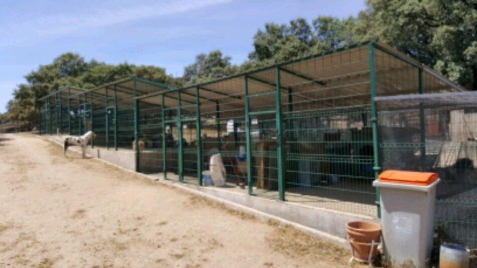 EQUO afirma que el decreto de Nucleos Zoológicos retrocede un siglo en materia de protección animal y pide su revisión