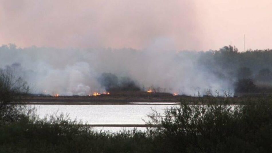 Ecologistas Extremadura denuncia ante la UE quemas masivas en regadíos extremeños