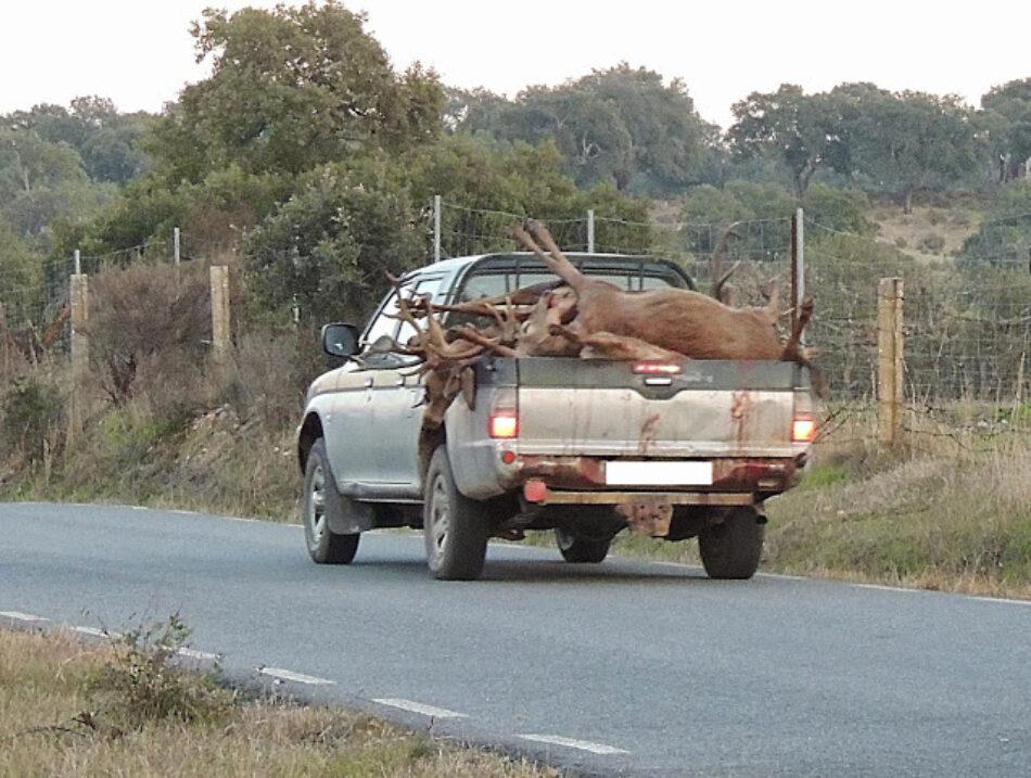 El Defensor del Pueblo pide a la Junta de Extremadura que dejen de celebrarse monterías dentro del Parque Nacional de Monfragüe