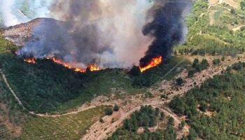 EU denuncia o abandono do monte galego e demanda á Xunta un plan de prevención e extinción dos lumes real con incremento de medios