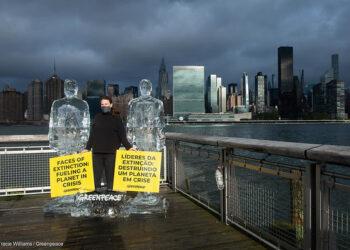 """Greenpeace """"derrite"""" a Trump y Bolsonaro durante la Cumbre de Biodiversidad de la ONU"""