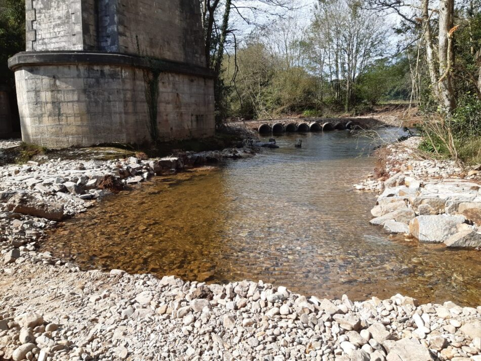 Otra agresión al río Esva en pleno remonte de los salmones