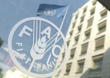 """La FAO tilda de """"inadmisible"""" el bloqueo alimentario contra Venezuela"""