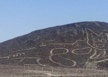Un gato de 37 metros es el nuevo geoglifo descubierto en las líneas de Nazca