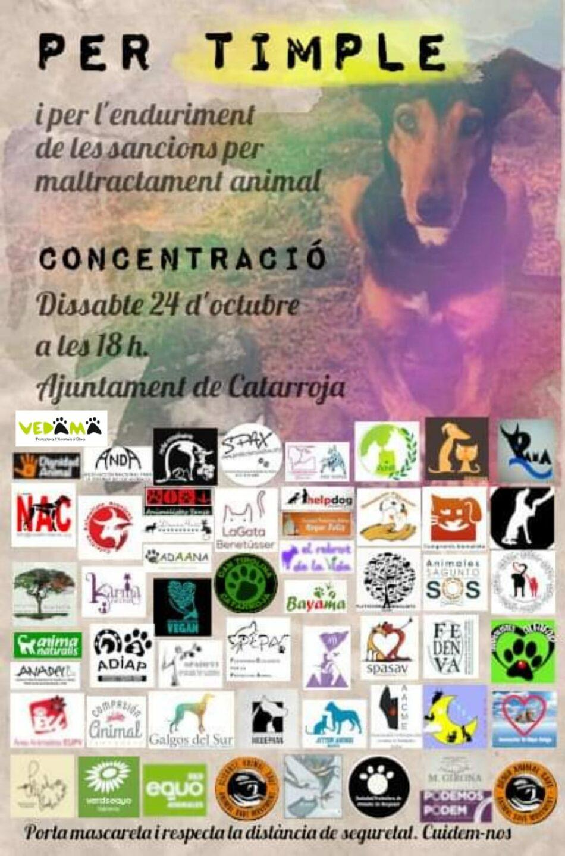 Por «Timple», por el endurecimiento de las sanciones por maltrato animal