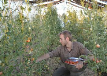 Las fuerzas del KRG detienen a un activista de Make Rojava Green Again