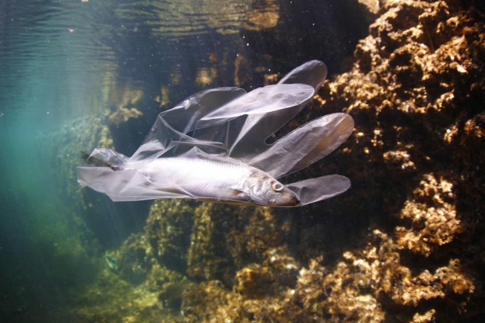 Más de 200.000 toneladas de plástico se vierten al Mediterráneo cada año