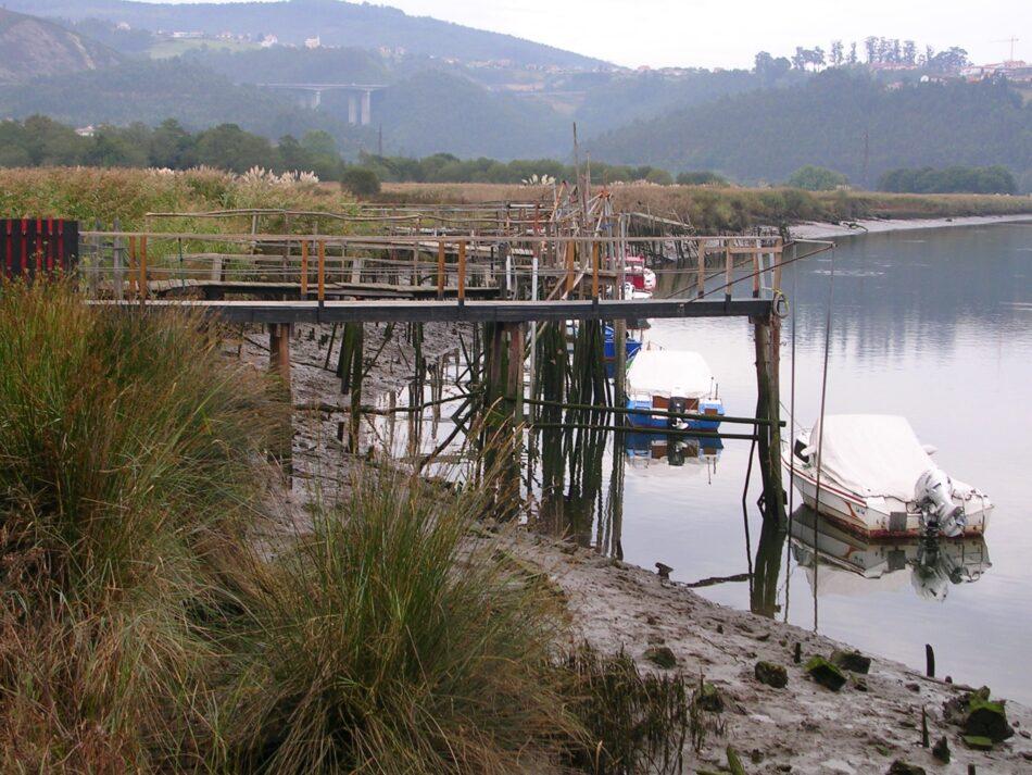 El Gobierno de Asturias cede ante los pescadores, vuelve amenazar el futuro de los ríos y sus pocos peces