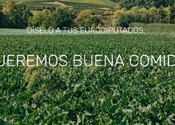 EQUO reclama una Política Agraria Común verde y justa que defienda la producción ecológica y local, y a los pequeños agricultores/as