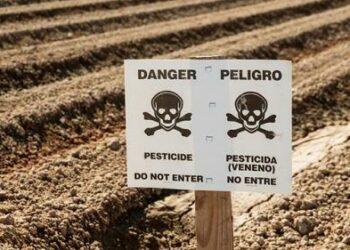 Europa exporta venenos prohibidos en sus propios países