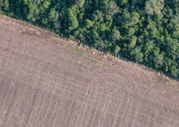 Unidas Podemos pide que se analice el impacto medioambiental del Acuerdo de Asociación UE-Mercosur