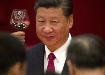 Xi Jingping al grupo BRICS: «Debemos oponernos a las sanciones unilaterales»