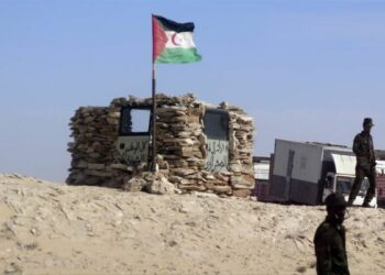 IU solicita la comparecencia del Frente Polisario en la comisión de Exteriores de la Eurocámara para analizar la situación en Guerguerat