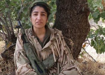 Serhildan Viyan Çiya, desde el Kurdistán: «el estado turco no detendrá a las guerrillas»