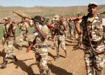 Etiopia: De una guerra étnica a un conflicto regional