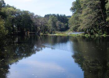 Ecoloxistas en Acción demanda á Confederación Hidrográfica Miño-Sil a anulación da concesión ao Club Fluvial de Lugo ao atoparse en Rede Natura 2000